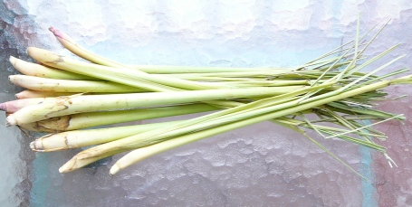 A good bunch of fresh lemongrass from Whole Foods in Chapel Hill, NC