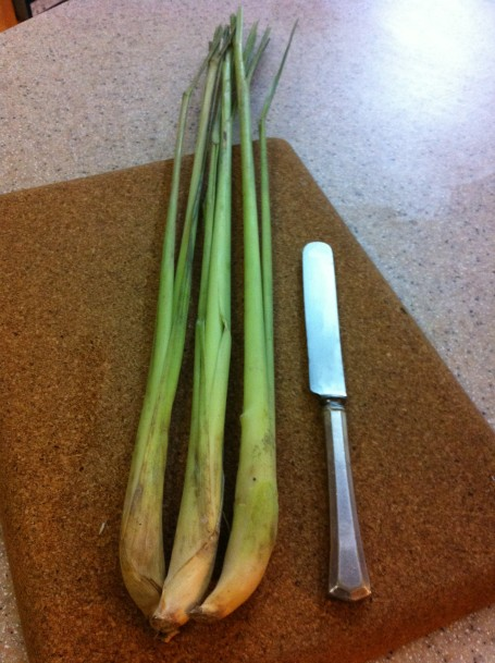 Lemongrass I purchased today, ready for trimming. The butter knife gives you an idea how big the stalks are.